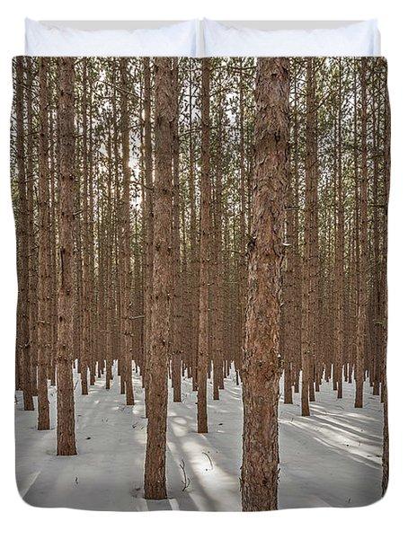 Sunlight Filtering Through A Pine Forest Duvet Cover
