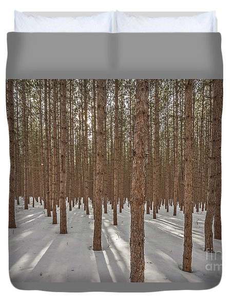 Sunlight Filtering Through A Pine Forest Duvet Cover