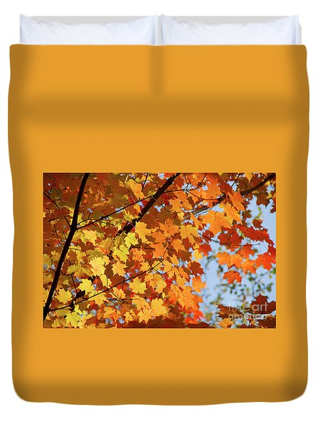 Duvet Cover featuring the photograph Sunlight In Maple Tree by Elena Elisseeva
