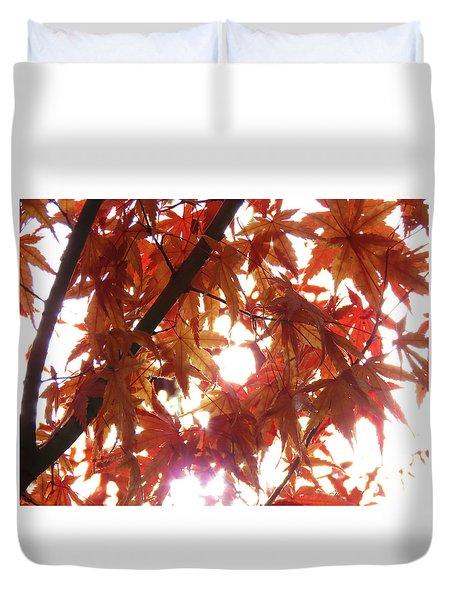 Sunlight Through Autumn Leaves - Photography - Nature - Seasonal Duvet Cover