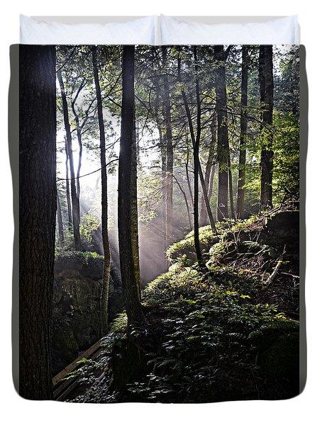 Sunlight Through Trees At Beartown State Park 3129c Duvet Cover
