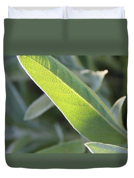 Duvet Cover featuring the photograph Sunlit Sage Leaf by Elizabeth Sullivan