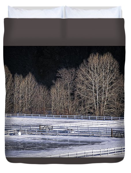 Sunlit Trees Duvet Cover by Tom Singleton
