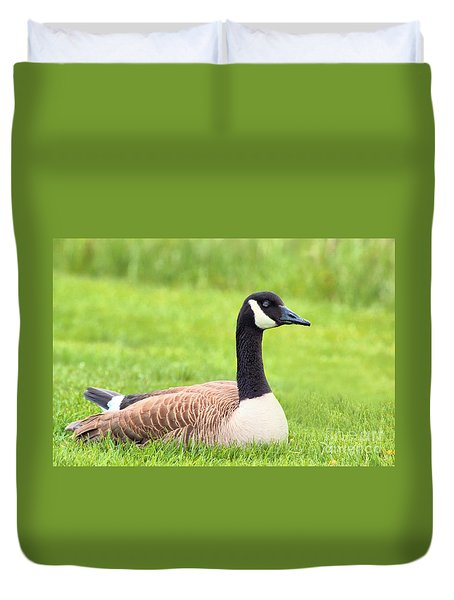 Sunning Goose Duvet Cover by Debbie Stahre