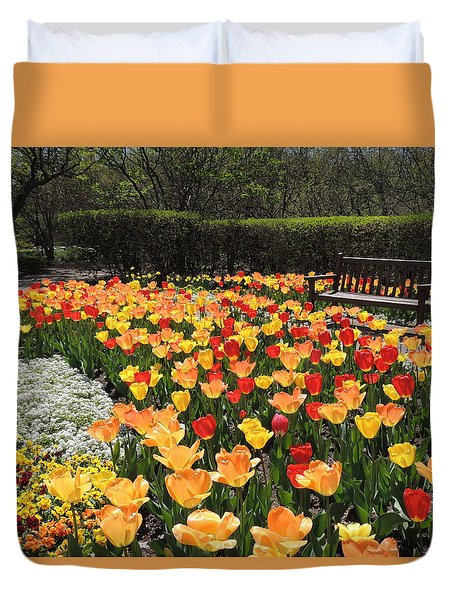 Sunny Days Duvet Cover by Teresa Schomig
