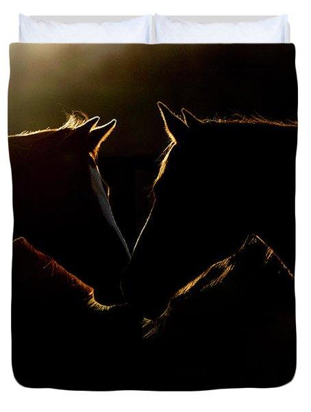 Sunrise Companions Duvet Cover