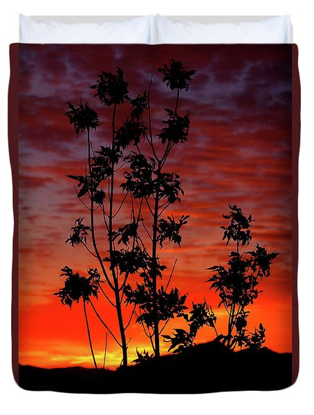 Sunrise Magic Duvet Cover