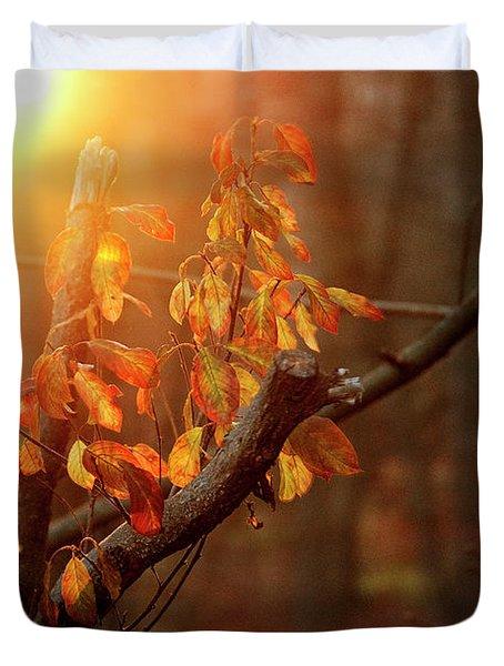 Sunset #8 Duvet Cover