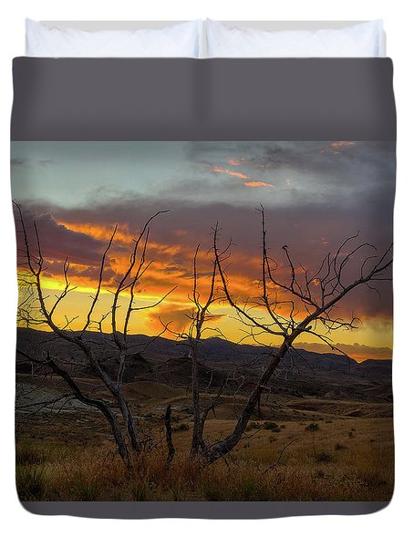 Sunset And Petrified Tree Duvet Cover by David Gn