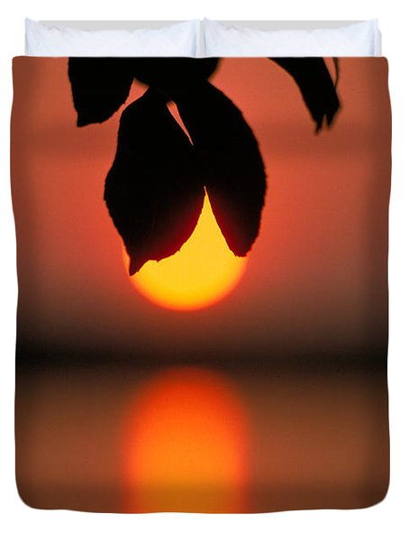 Sunset And Spider Duvet Cover by Thomas Firak