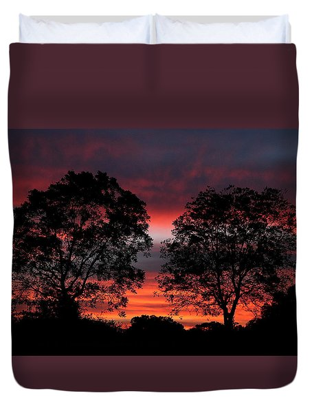 Sunset Behind Two Trees Duvet Cover by Sheila Brown