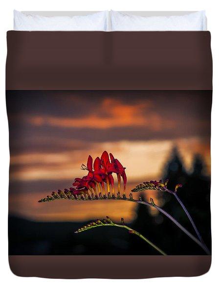 Sunset Crocosmia Duvet Cover