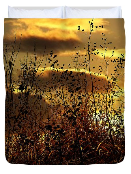 Sunset Grasses Duvet Cover