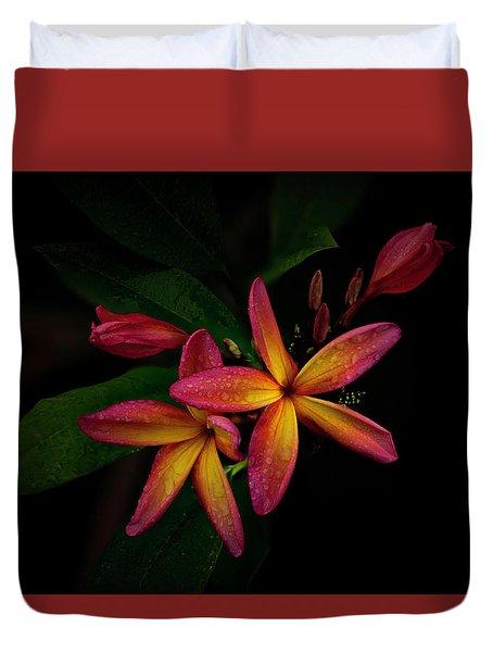 Sunset Plumerias In Bloom #2 Duvet Cover
