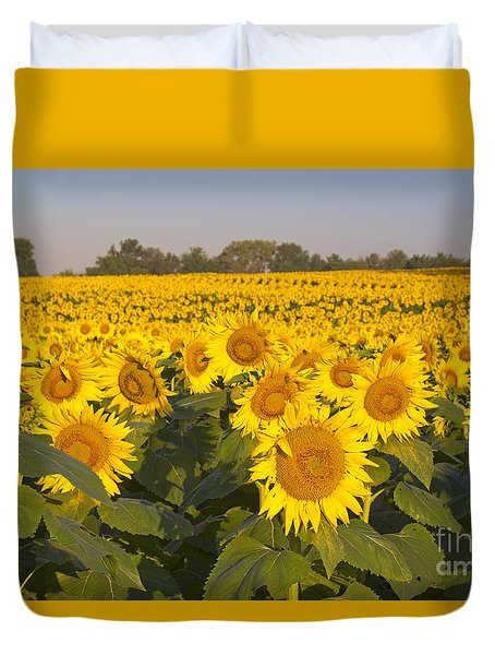 Sunshine Flower Field Duvet Cover