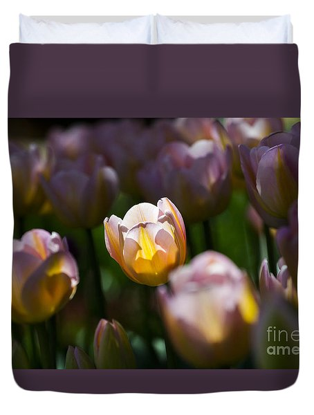 Duvet Cover featuring the photograph Sunshine Tulips by Angela DeFrias