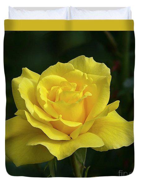 Sunsprite Rose 2 Duvet Cover