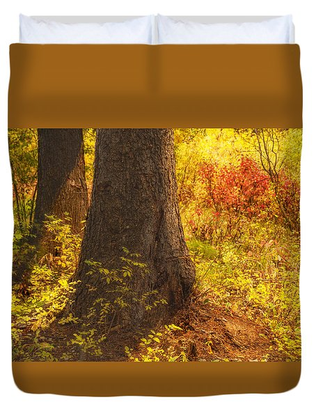 Sunstream Duvet Cover