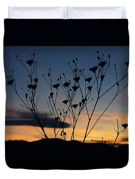 Superbloom Sunset In Death Valley 103 Duvet Cover by Daniel Woodrum