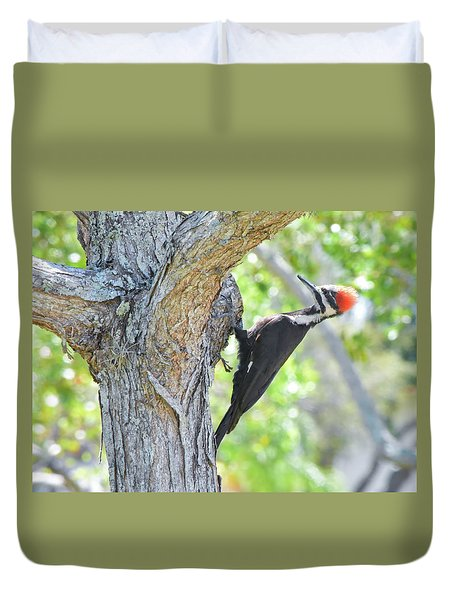 Surprised By Pileated Duvet Cover