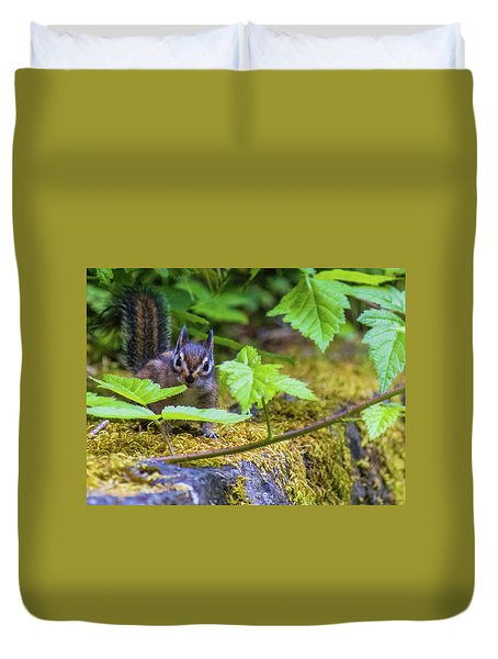 Duvet Cover featuring the photograph Surprised Chipmunk by Jonny D