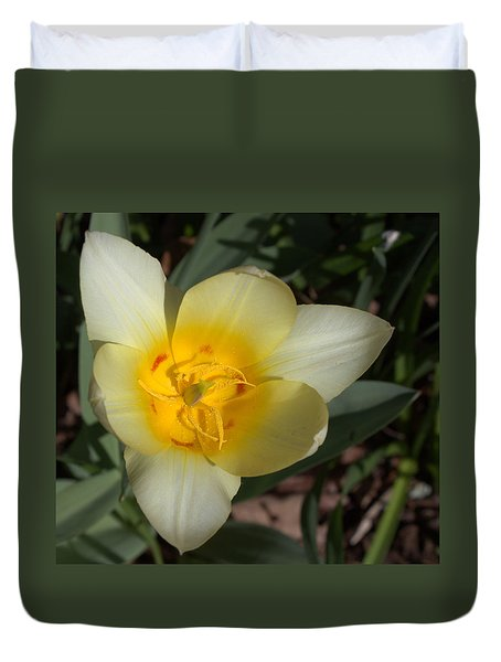Surprising Sunny Tulip Duvet Cover by Liz Allyn