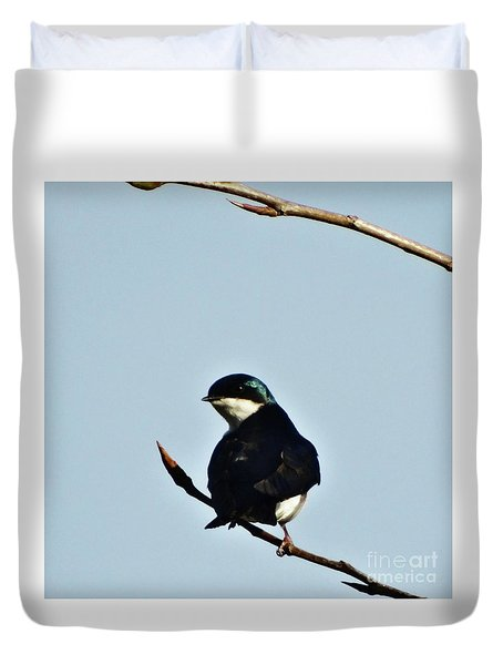Swallow 2 Duvet Cover
