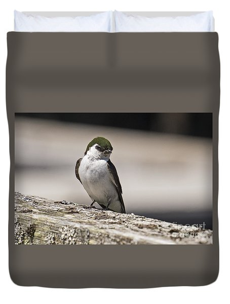 Duvet Cover featuring the photograph Swallow by Inge Riis McDonald