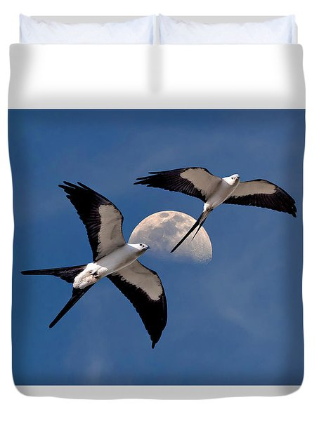Duvet Cover featuring the photograph Swallow Tail Kites In Flight Under Moon by Justin Kelefas