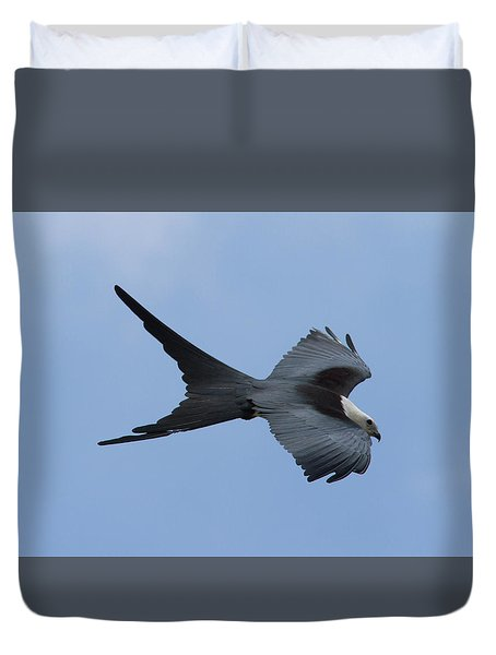 Swallow-tailed Kite #1 Duvet Cover by Paul Rebmann