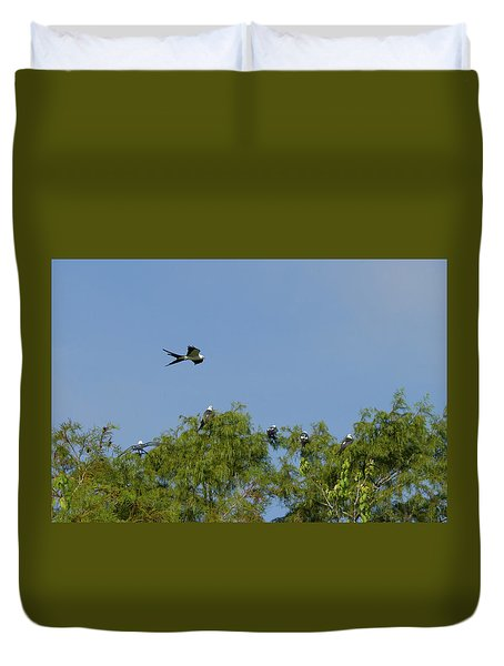 Swallow-tailed Kite Flyover Duvet Cover