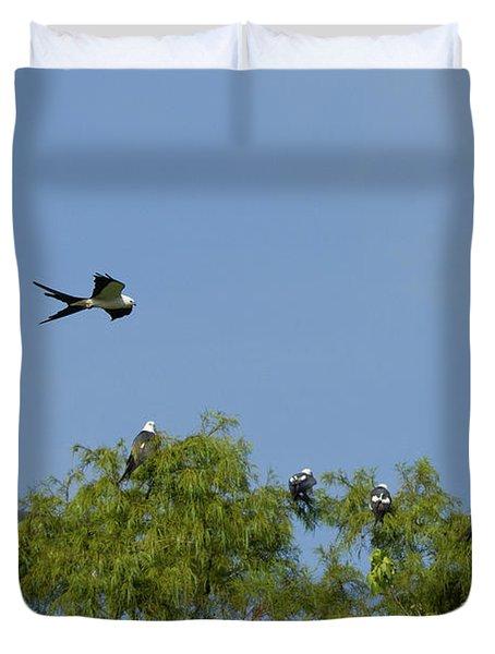 Swallow-tailed Kite Flyover Duvet Cover