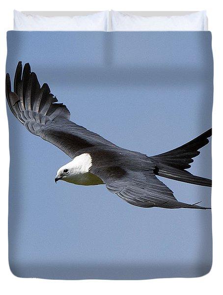 Swallow-tailed Kite Duvet Cover