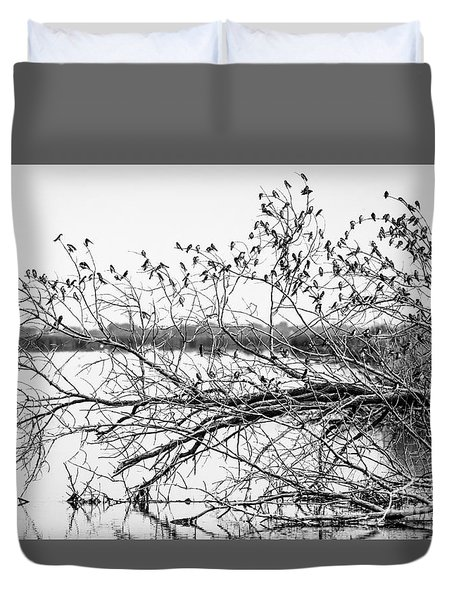 Duvet Cover featuring the photograph Swallows At Horicon Marsh  by Ricky L Jones