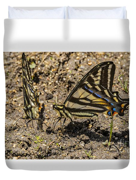 Duvet Cover featuring the photograph Swallowtail Butterflies by Mitch Shindelbower