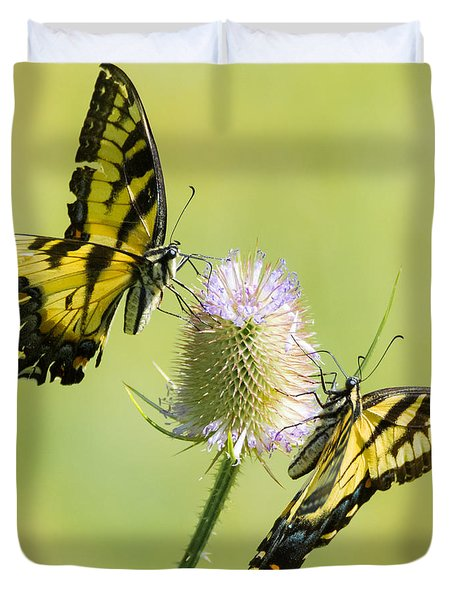 Swallowtails On Thistle  Duvet Cover