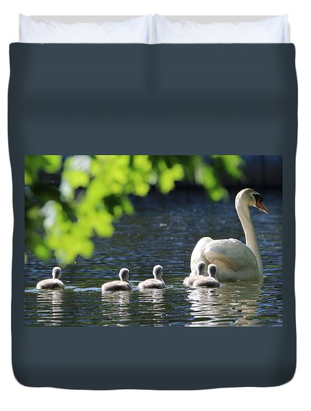 Swan And Cygnets Stony Brook New York Duvet Cover
