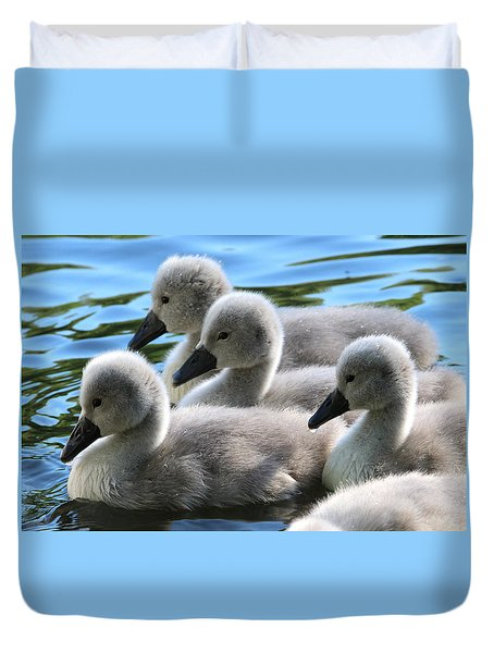 Swan Cygnets Stony Brook New York Duvet Cover
