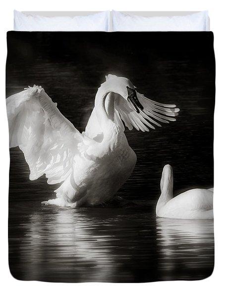 Swan Display Duvet Cover