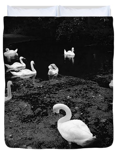 Swan Family Duvet Cover
