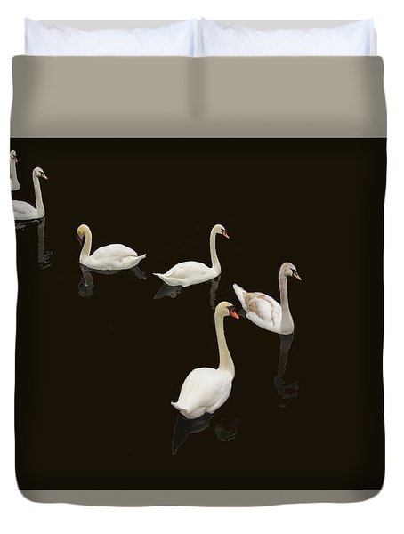 Duvet Cover featuring the photograph Swan Family On Black by Constantine Gregory