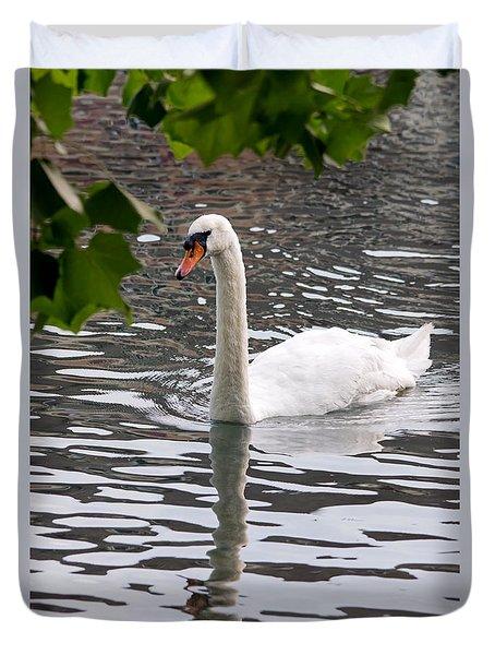 Swan Framed By Maple Leaves Duvet Cover
