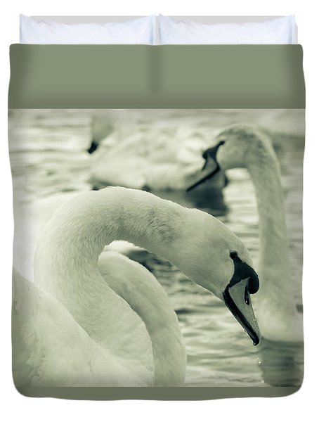 Swan In Water Duvet Cover