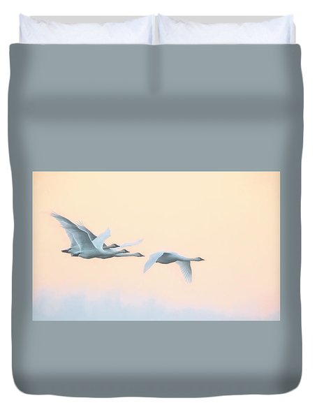 Duvet Cover featuring the photograph Swan Migration  by Kelly Marquardt