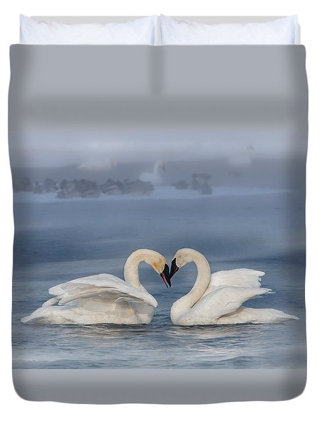 Duvet Cover featuring the photograph Swan Valentine - Blue by Patti Deters
