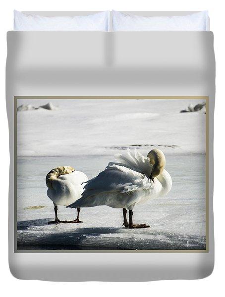 Swans On Ice Duvet Cover