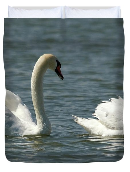 Swans On Lake  Duvet Cover
