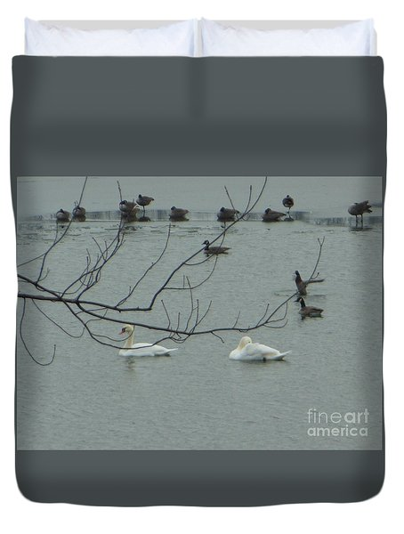 Swans With Geese Duvet Cover