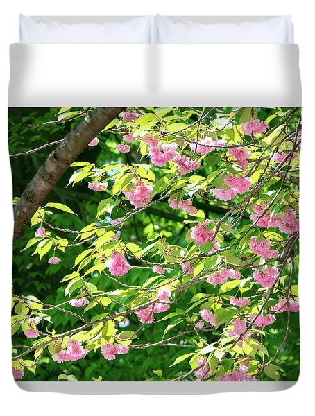 Sweeping Cherry Blossom Branches Duvet Cover
