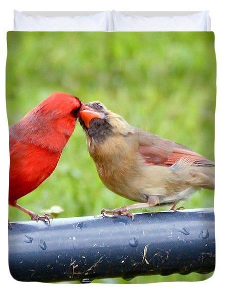 Sweet Cardinal Couple Duvet Cover